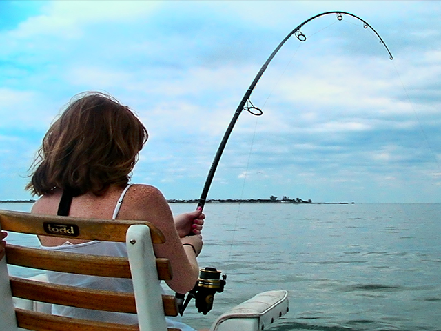Girl in fighting chair bends a rod when near-shore Charter Fishing in Englewood Florida with Captain Dan Bourcier